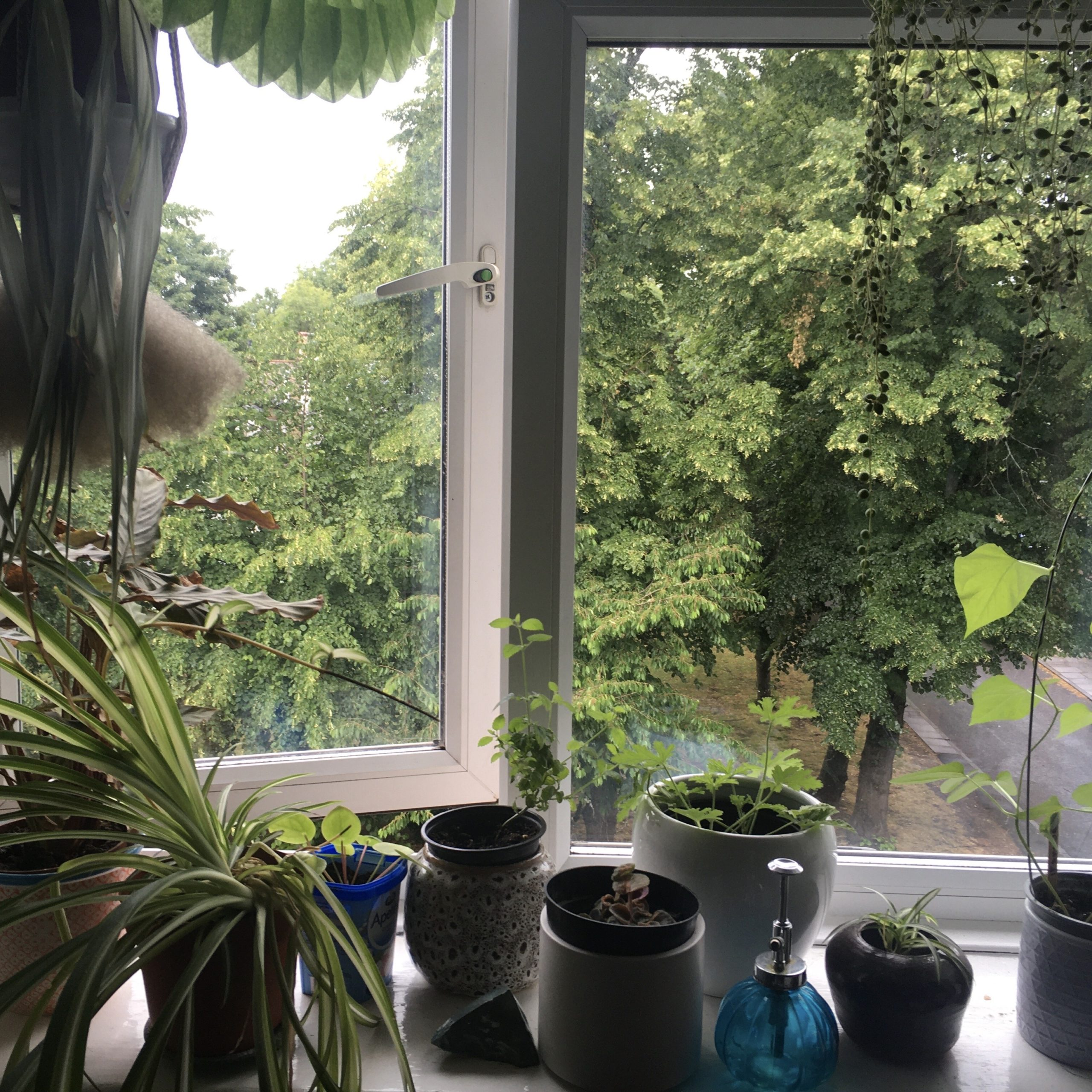 Rain, Bedroom Window, Brockley, London, UK at 1.30pm on 17th June 2020 – by Liberty Rowley